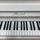 Ravel 110 Chrome