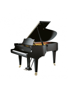 C. Bechstein  MP192