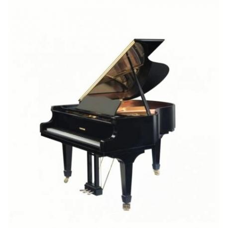 Hoffmann HW-V183 noir laqué