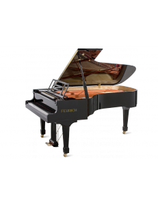 FEURICH 218 - Concert I