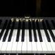 C.Bechstein  L167 noir laqué